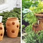 6 миниатюрных садов для дома