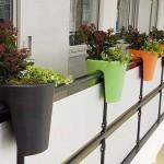 Интересные решения для зелени в домашних условиях